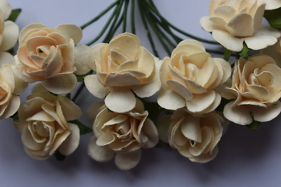 Roses 1cm (x10)