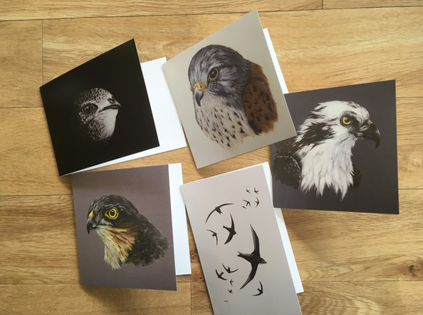 Bird Collection Blank Cards