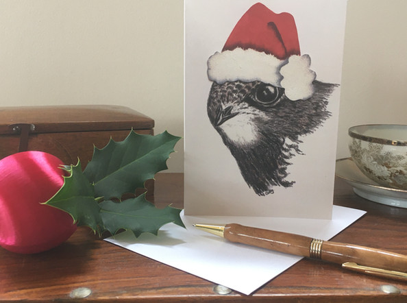 """Jolly Swift"" Common Swift Christmas Card!"