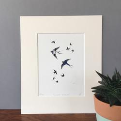 'Summer Breeze' - Swallows