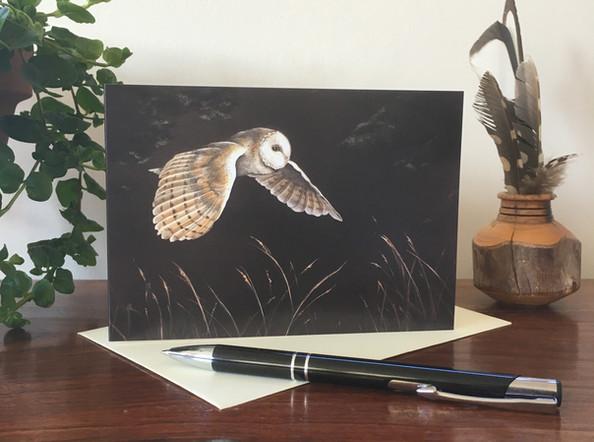 On Silent Wings - Barn Owl