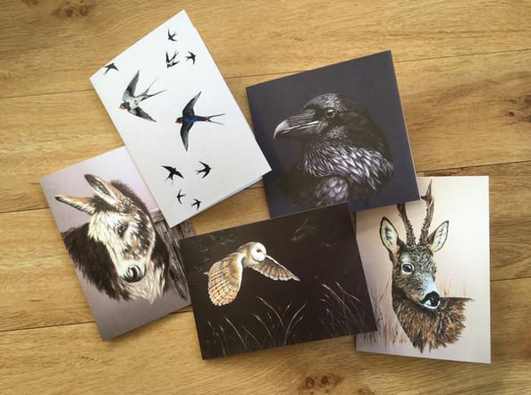 Animal & Bird Collection Blank Cards