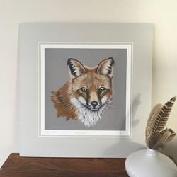'Trickster' The Fox