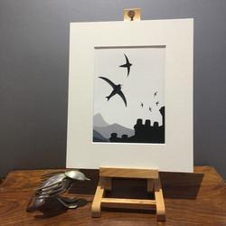 'Skychasers' - Common Swift