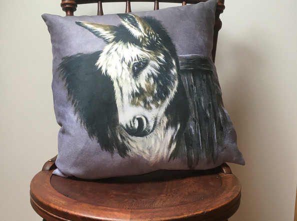 Donkey Vegan Suede Cushion