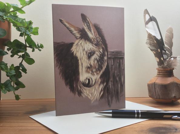 Glen - Donkey