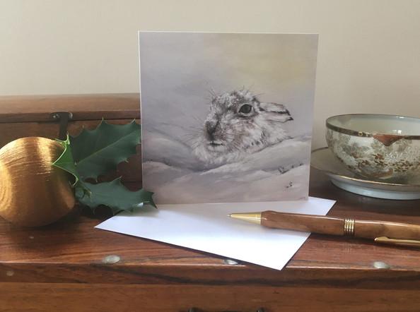 Mountain Hare Christmas card