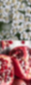 yarrow-pom_edited.jpg