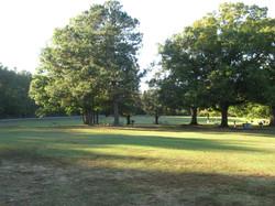 Medoc Spring Field