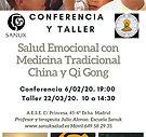 CONFERENCIA JULIO ALONSO MADRID.jpg