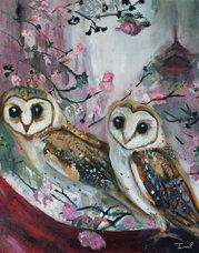 Barn Owls & Cherry Trees