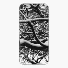 Snow on Branches Phone Case