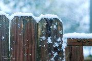 Snow on Fence