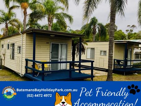 Pet Friendly Caravan Parks Batemans Bay NSW [Dog Friendly]