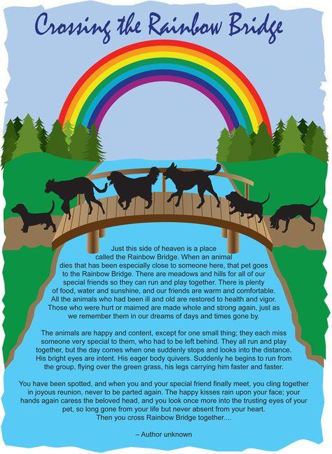 rainbowbrigde.jpg