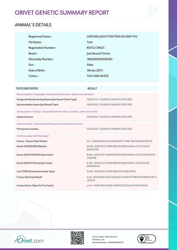 21147453-GENETIC SUMMARY REPORT3.jpg
