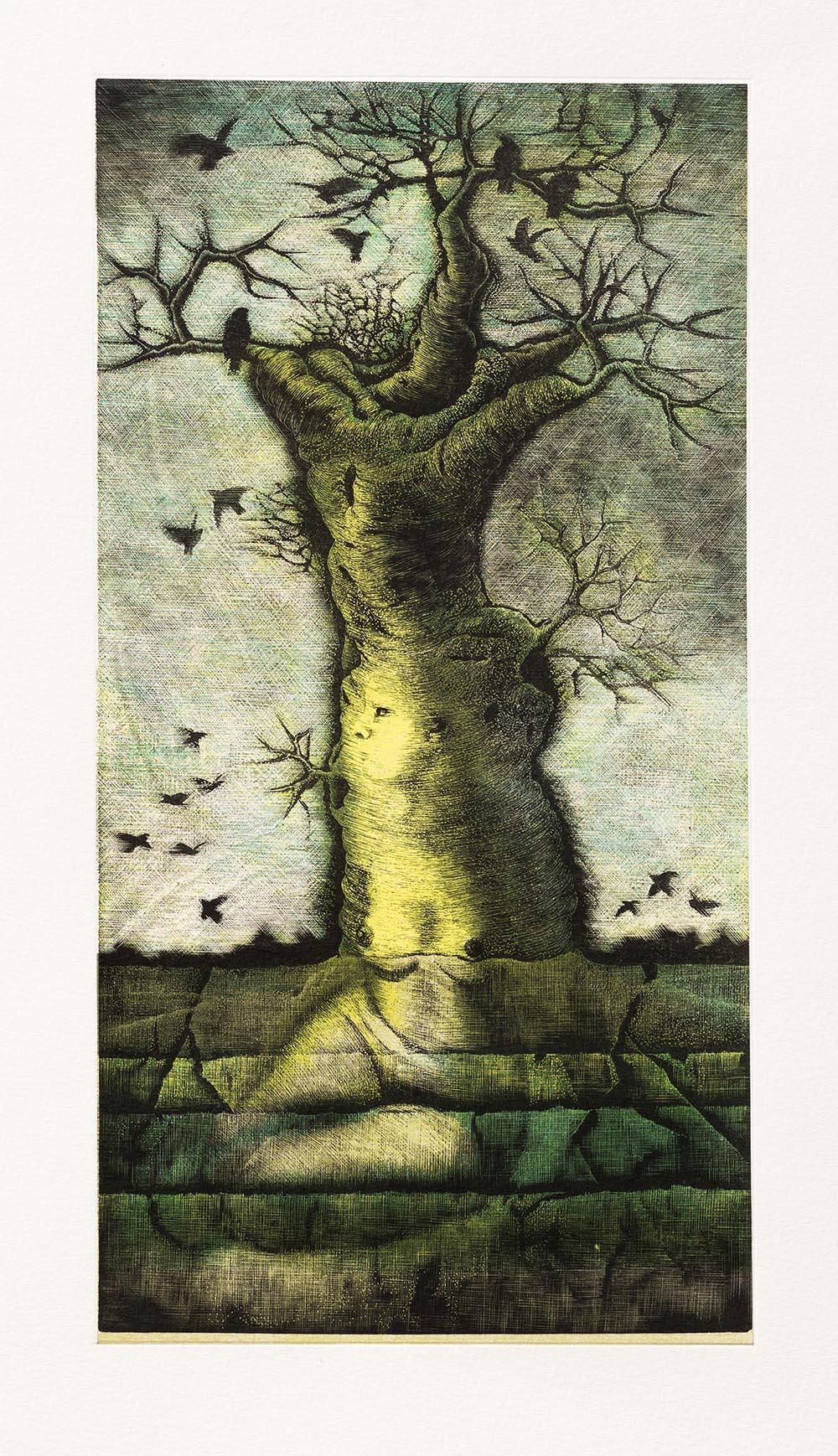 Transferred soul - Roots·B -