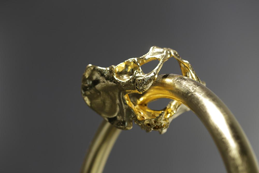 แหวนหมั้น?  - Engagement Ring?