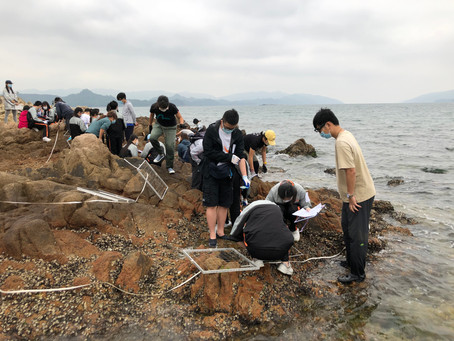 [Apr 2021] Sampling Starfish Bay rocky shores with WFLC school