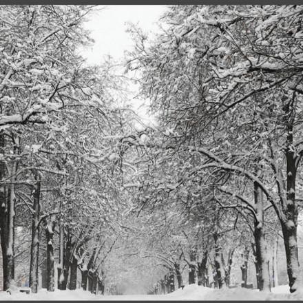 Danas snijeg i kiša: Objavljena prognoza za narednih 10 dana, evo kakvo nas vrijeme očekuje