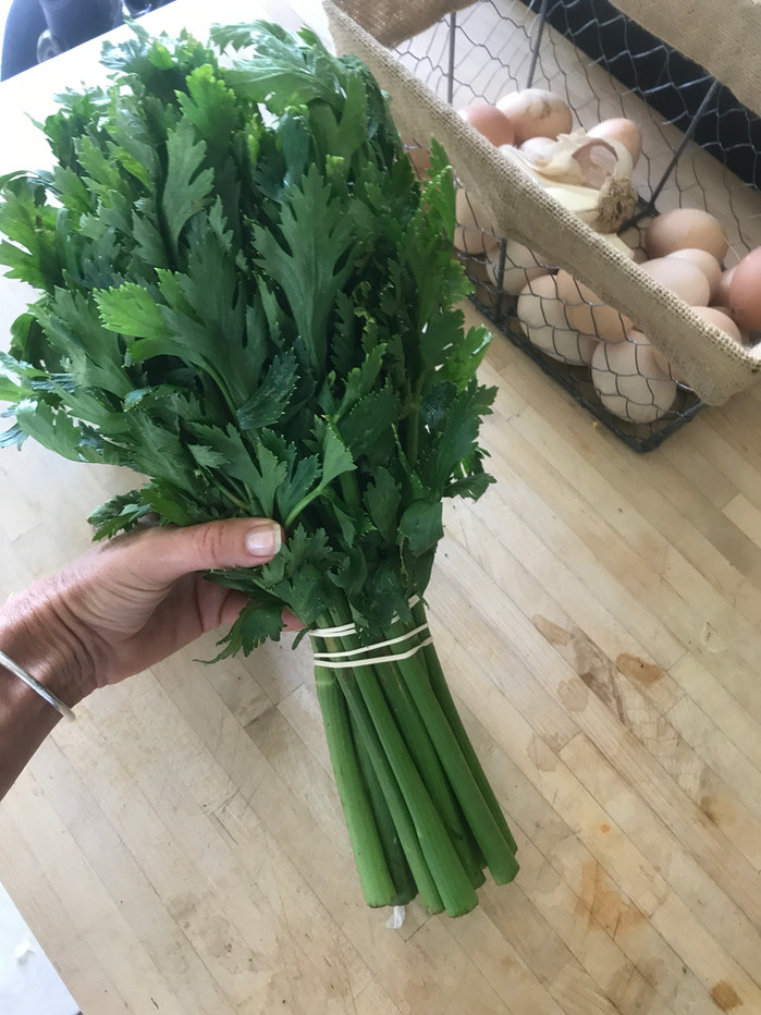 Don't Under Estimate The Power of Celery!