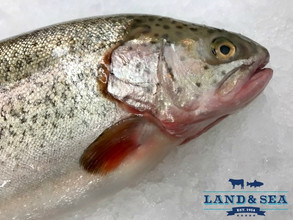 Land & Sea Announces Partnership With Local Farm-Raised Trout Supplier