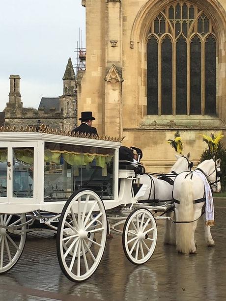 funeral horse.JPG