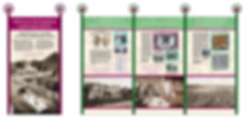 Hopkins Raspberry exhibit 1.jpg
