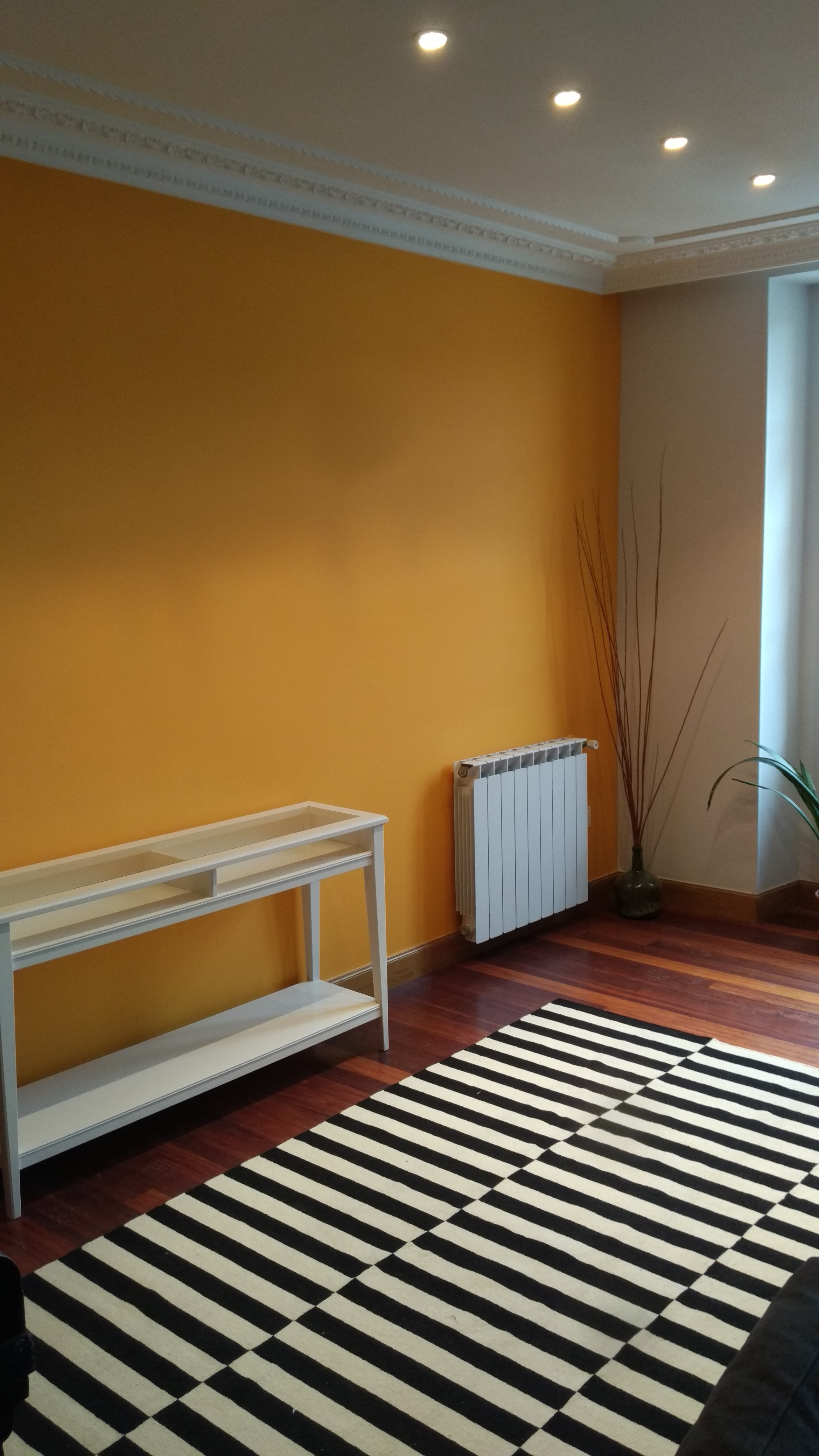 Pintando vivienda Parte Vieja