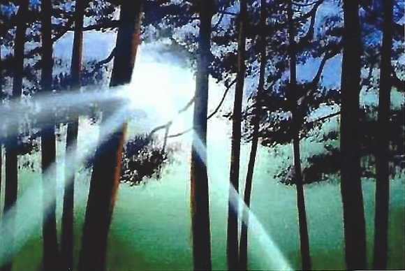"""Forest Rays"" Painting Packet"