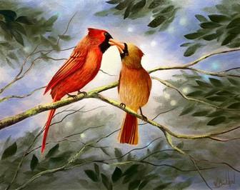 cardinal-couple.jpeg