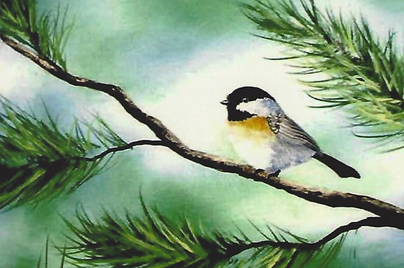"""Black Capped Chickadee"" Painting Packet"