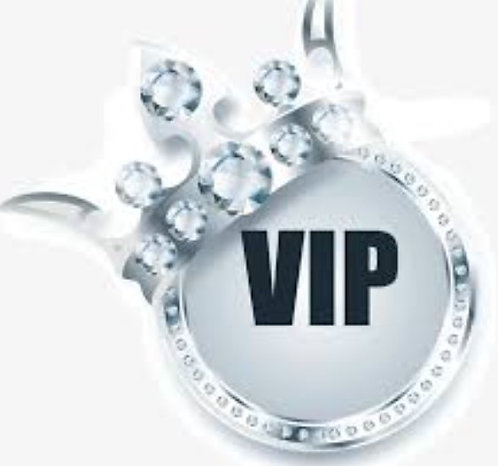 VIP Løp SILVER: 6mnd. oppfølging inkl.:  24xPTtimer,   7xTesting,   12xSamtaler