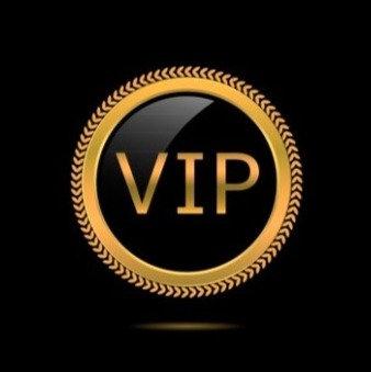 VIP Løp GOLD: 3mnd oppfølging inkl. 24xPTtimer,  4xTesting,  6xSamtale