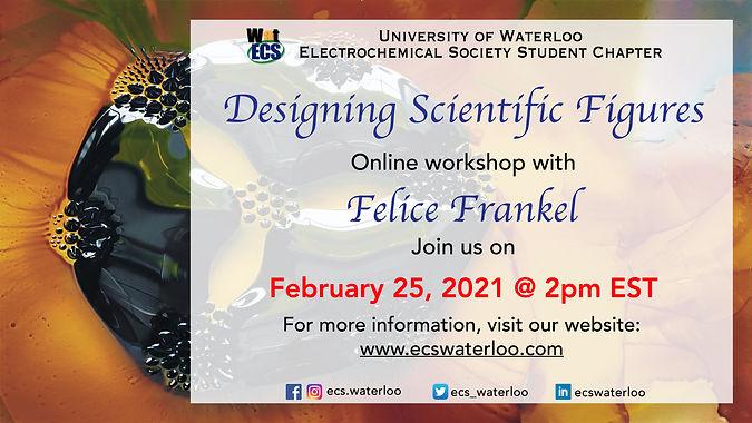 Feb 2021 Imaging workshop.jpg