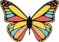 Butterfly Colorful Wings_edited.png