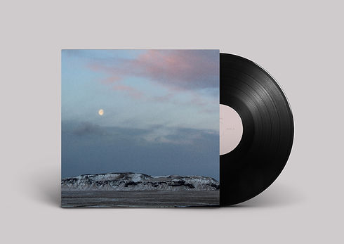 Noche vinyl B.jpg