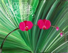 fan Orchid