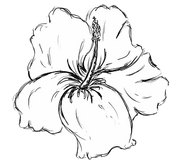 gray%20scale%20hibiscus_edited.png