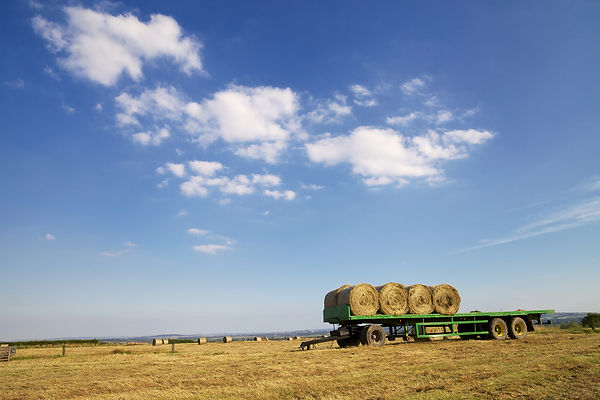 bigstock-Hay-Bales-On-Trailer-38440561.j
