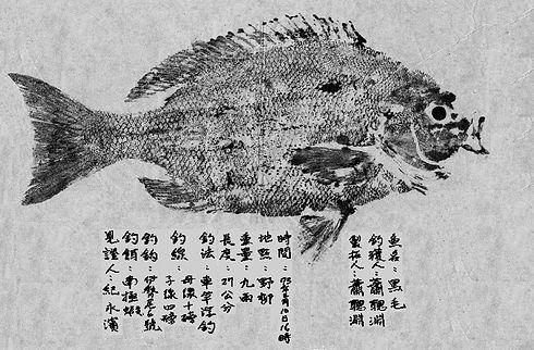 Hsiao--fish.JPG