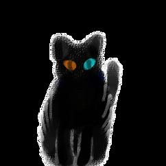 夕方の猫.png