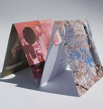 concertina-1.jpg