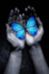 butterflyhands.jpg