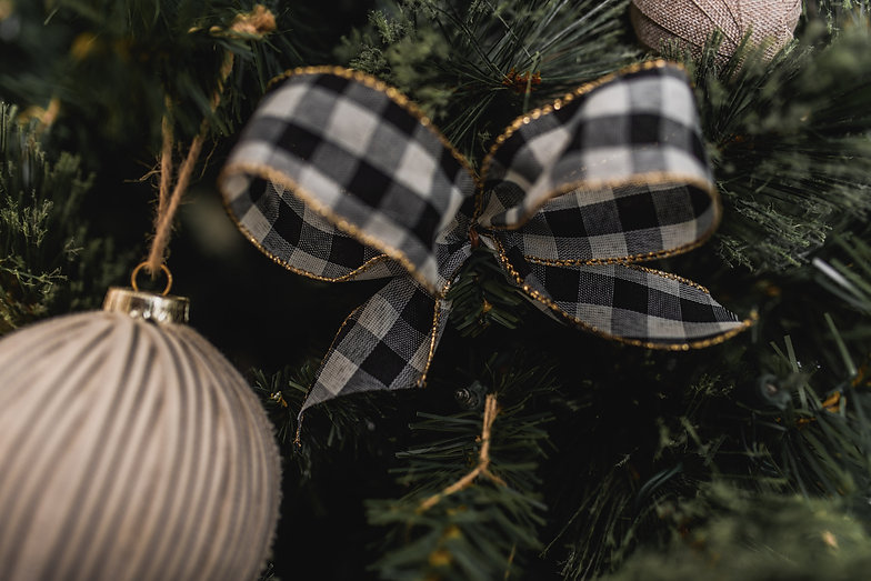 Christmas-71.jpg