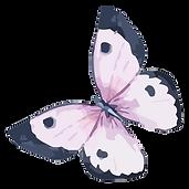 Watercolor Butterfly 5