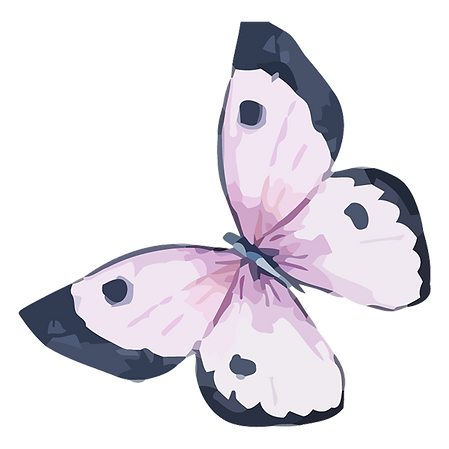 Watercolor Butterfly 5