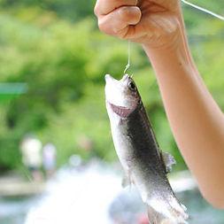 神戸国際マス釣り場|東京都|グランピング