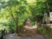 都民の森|東京都|グランピング
