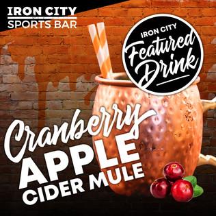 cranberry-apple-cider-mule.jpg
